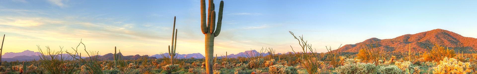 Arizona desert - Phoenix CyberKnife